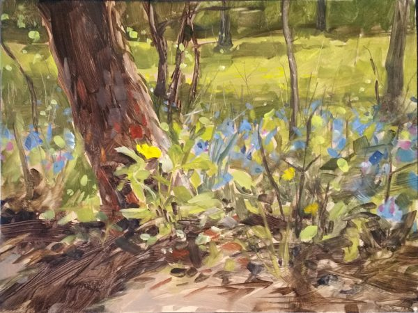 Oil painting, original artwork, forest, foliage, flowers, bluebells, celandine poppies, plein air