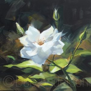 White Rose painting