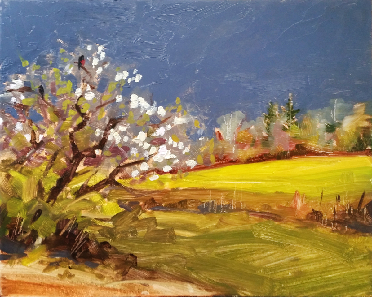 Coming Rain, plein air oil painting